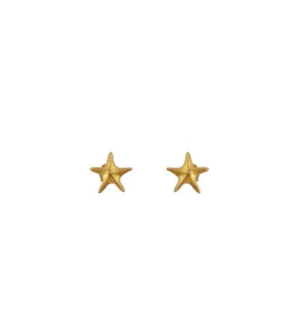 Σκουλαρίκια Αστερίας